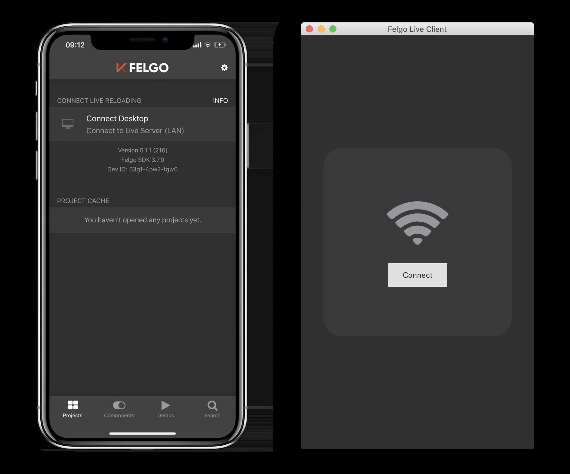 FelgoDevApp-MobileDesktop